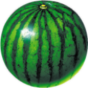 watermelon prober 2.2 for Android