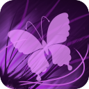Lilac Butterfly Live Wallpaper 2.0 for Android