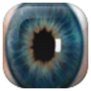 Widget Eye Camera (silent home screen mode) 1.0 for Android
