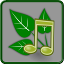Nature Sounds Relax and Sleep 4 for Android