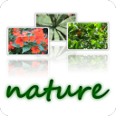 Wallpapers Nature -640x480- 3.0.0 for Android