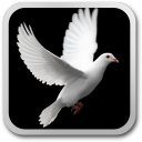 Pigeon live wallpaper 1.4 for Android