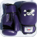 KickBoxing Tricks 1.0 for Android