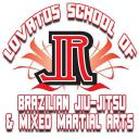 Lovato's Brazilian Jiu Jitsu a 1.271 for Android