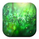 Green Grass Wallpaper 1.0.2 for Android