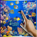 Fish Swim in All Colors LWP 32 for Android