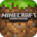 Minecraft - Pocket Edition 0.8.1 for Android
