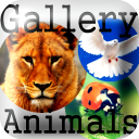 Ska HD Gallery Of Animals 1.0.0 for Android