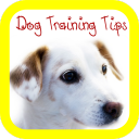 Dog Training Tips 1.0 for Android