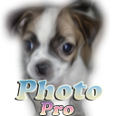 Photo Dog Pro 1.06 for Android
