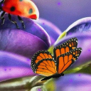 Ladybug And Butterfly Live Wallpaper 26 for Android