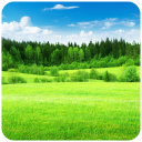 Relax Country - Nature sounds 1.10.2 for Android