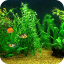 Fish Tank HD Live Wallpaper 1.3 for Android