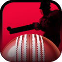 Play It Cricket  5.0.4 for Android