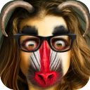 Funny Face Changer 7.3.0.33 for Android