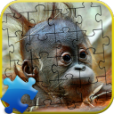 Funny Puzzle 1.0 for Android