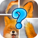 Animal Picture Puzzle 13.3.3.4 for Android