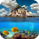 Ocean Live Wallpaper 1.0 for Android