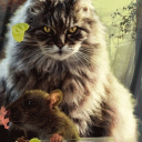 Cat And Mouse Live Wallpaper 26 for Android