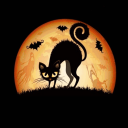 Halloween Black Cat Live Wallpapers 1.0 for Android