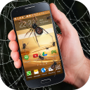 Spider in phone funny joke 1.0 for Android