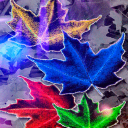 Coloful Leafs Live Wallpaper 2 for Android