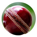 Play Cricket Games 1.0 for BlackBerry