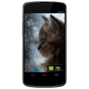 # # # Snowflake Kitten Live Wallpaper 1.00 for Android