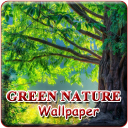 Awesome Nature Wallpapers  1 for Android