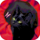 Cat And Butterfly Live Wallpaper 1.0.1 for Android