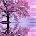 # # # Pink Lake Reflection Live Wallpaper 1 for Android
