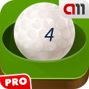 Ball Labyrinth PRO 2.5.1.5 for Android