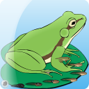 My Pet Frog 1.1 for Android