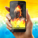 Ghost Rider Fire Flames Live Wallpaper 1 for Android