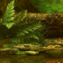 Jungle Water Stream LWP 25 for Android