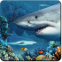 Shark Reef Live Wallpaper 1.05 for Android