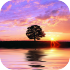Sunset Live Wallpaper 1.3 for Android