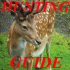 Hunting Guide 1.01 for Android