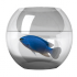 Aquarium Fish Pick 1.6 for Android